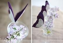 Ideas / mariposas!,
