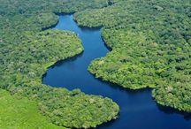 Râuri şi fluvii / Râurile şi fluviile lumii pot fi un motiv să-ţi alegi următoarea destinaţie de vacanţă, pentru că nu sunt doar nişte simple curgeri de apă. Sunt elementele centrale ale unui peisaj urban, rural sau pur şi simplu natural de excepţie, care te va fermeca pe de-a întregul.
