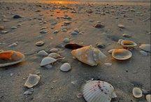 Love beach!!