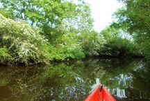 Kayak et voile sur l'Estuaire de la Gironde