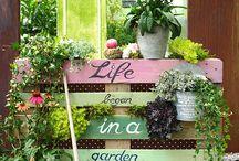 garten :: garden
