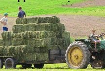 farming / by Urban Farm Trading Post