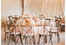 Stelli wedding