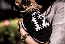 FAYRI - Customized Name & Number Mesh Front Sweatshirt for Dogs / Our little buddies are true athletes when they are on field! Place your dog's name and favorite numbers on the back. The tummy side is made with sporty mesh as in the photo, so it will ventilate as they run and keep them cool and airy.