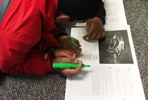 Close Reading / Close reading strategies, text mapping, and finding evidence to support text.