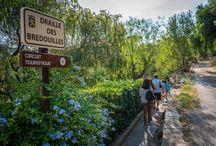 Les visites Guidées / La meilleure façon de découvrir la commune de Bormes les Mimosas c'est de suivre une de nos 3 visites commentées d'Avril à septembre !