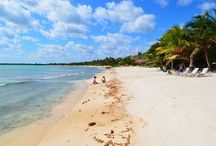Caribbean Beaches of Quintana Roo and the Riviera Maya / The following photographs are of our stunning beaches located in Quintana Roo and the Riviera Maya. Here are pure white sand Caribbean beaches laced with plam trees and parallel to the aquamarine blue sea. Best Riviera Maya Rentals.
