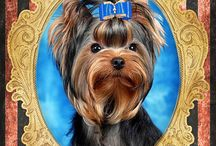 Raças de Cães - Artelier AS e CRJr