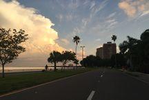 Tampa-Saint Petersburg / Florida's second largest metropolitan area on scenic Tampa Bay