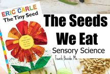 PreK Seed and Plant Unit