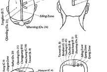 TCM Scalp Acupuncture
