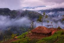 Papua New Guinea images