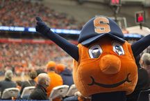Otto completed the #SUBucketList / Otto completed the #SUBucketList! Can you? Share you photos with #SUBucketList & #SyracuseU for a chance to be featured!