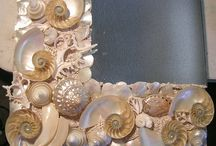 SHELLS / by melodie burrus