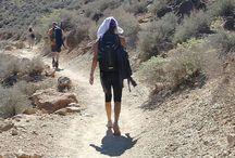 Explore AZ