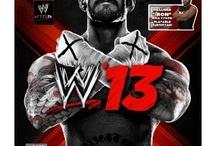 Pro Wrestling/Sports Entertainment