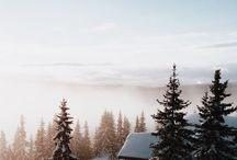 Vintermiljö / Snö