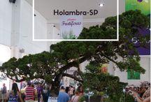 Expoflora Holambra