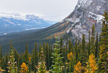 Canada / by Jackie LP