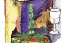 Cannabis Absinthe - Canasinth / Ein Cannabis Absinthe voller Komplexität. Der Canasinth entfaltet eine bemerkenswerte Palette an Aromen und eine milde süsse im Abgang die Sie beeindrucken wird. www.absinthedistribution.ch