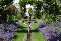 Dunfermline / Ideas for Dunfermline garden
