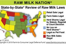 Raw dairy / More primal than paleo - but so many government organisations aren't in favour of raw milk...