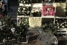 kwiaciarnie i sklepy