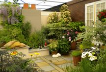 Garden Ideas / Garden Remodeling Ideas