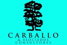 Carballo & Asociados Consultores Políticos / by Juan Carballo