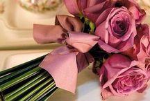 Rosas e namorados
