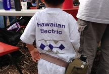 Connecting with Our Communities / Hawaiian Electric, Maui Electric, and Hawaii Electric Light supporting our local communities.