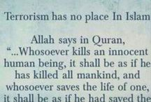 Does Islam supports terrorism
