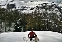 Viaja con tu perro por el Pirineo de Aragón