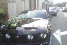 décorations de voitures