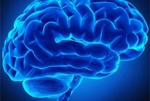 SAJ Neurology (SAJN) / Scholarena Journal of Neurology (SAJN) is an open access, Peer- reviewed journal which aims to publish complete and reliable source of information about the discoveries and latest developments in the form of original research articles, review articles, case reports, short communications etc.