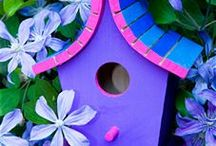 Cool Birdhouses & Feeders
