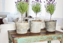 Modern Farmhouse / Decor with rustic, farmhouse and/or industrial design / by Stacey Howell