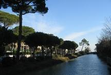Milano Marittima (RA), Italy / A seaside resort on the Adratic Coast of Italy, just a few km from Ravenna (RA)