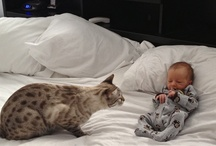Kids with pets / Got a great pic of your pet and your child....pin it here to share.