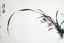 蘭(Orchid)