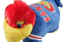 Jayhawk Nation / by Berit Conway
