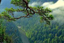 Kocham ❤ polskie góry