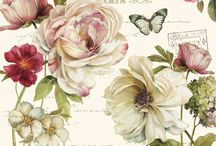 Flower Prints / Flower and roses, prints