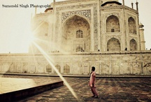 Photographer of the Week: Shari