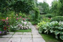 Мой сад план