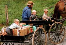 Amish / by DeAnne Richardson