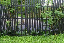 Spaljé/staket