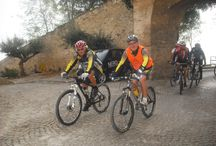 Sport, natura, arte e gastronomia / In viaggio in Mountain Bike tra mille scrigni della nostra Italia e non solo