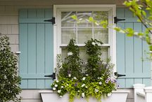 Paint- Exterior / by Dorothy Stillwell