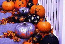i <3 pumpkins! / by Tina Garrow